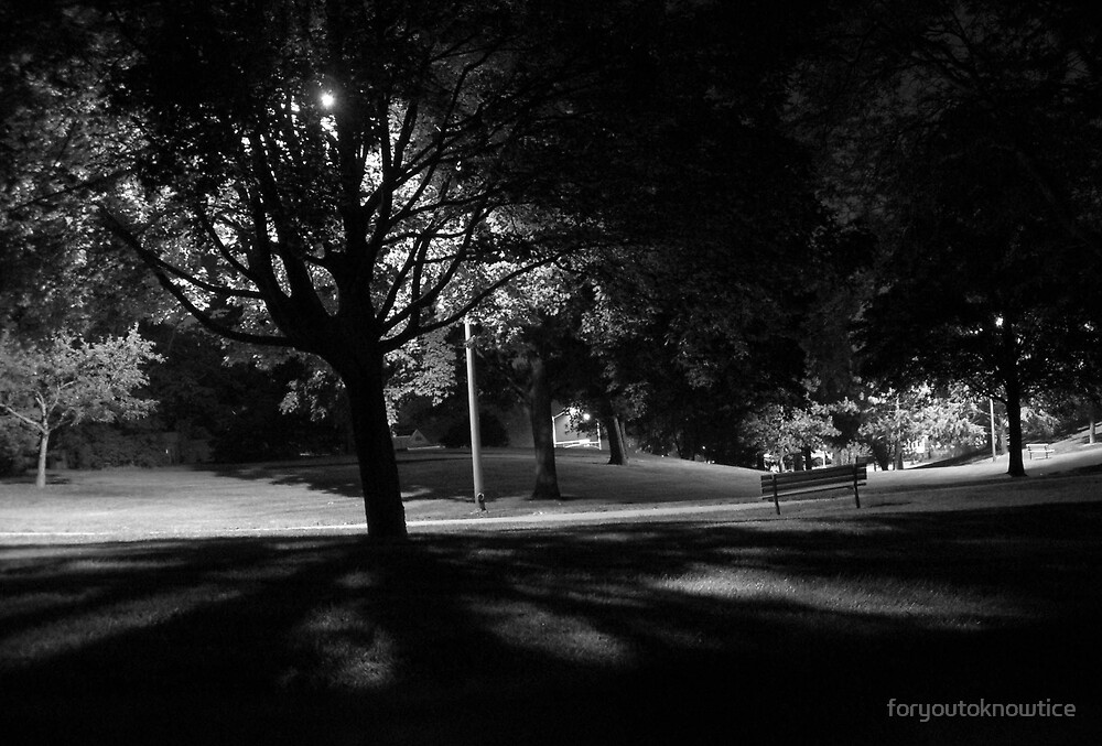 The Park at Night by foryoutoknowtice