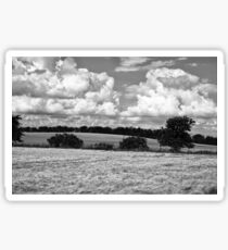 Wheat field in black and white Sticker