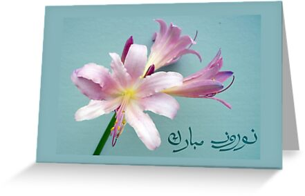 Happy norooz in farsi persian new year surprise lily greeting happy norooz in farsi persian new year surprise lily by shoaffballanger m4hsunfo