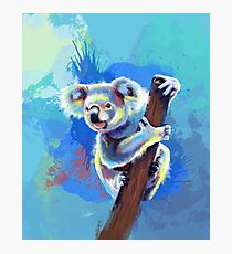 Koala Bear - koala illustration, colorful animal Photographic Print