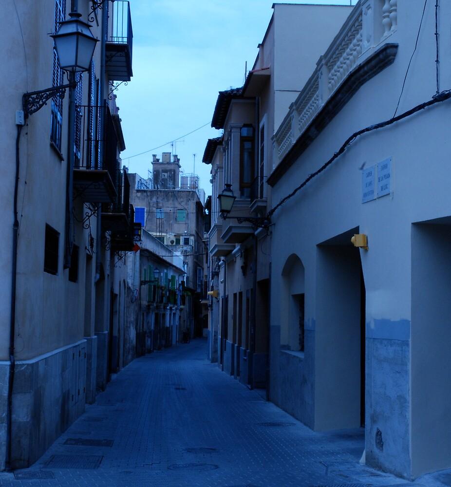 Around Palma  by Eugenia