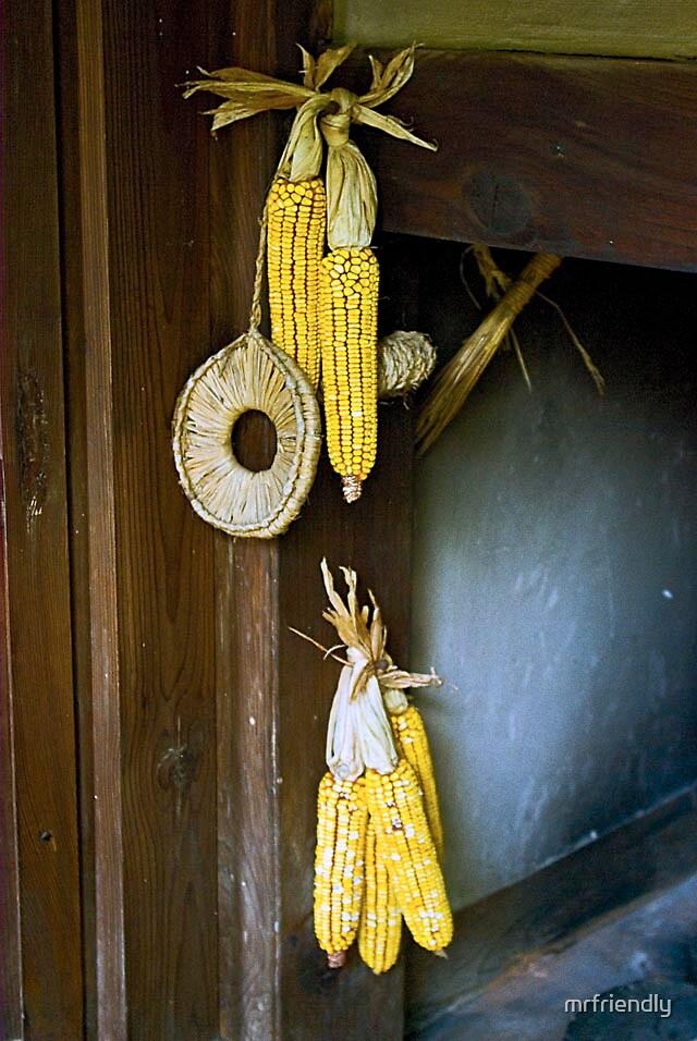 corn rows by mrfriendly