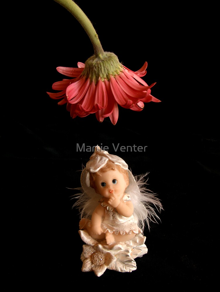 Underneath the Lamplight by Martie Venter