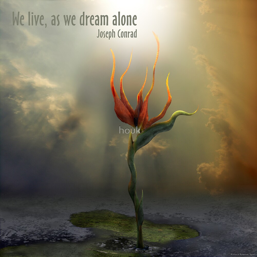 We live, as we dream alone by houk