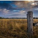 Old Fence  by Scott Sheehan