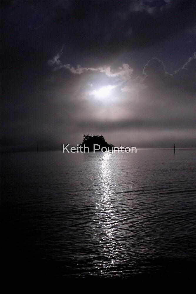 Island by Keith Poynton