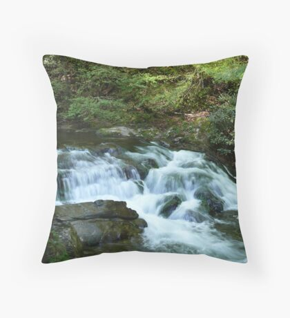 Liquid Silk Throw Pillow