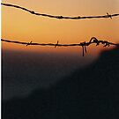 Sunset and barbed wire at Big Sur, California. by Christina Weber