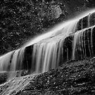 Dingmans Falls by Patrick Beggan