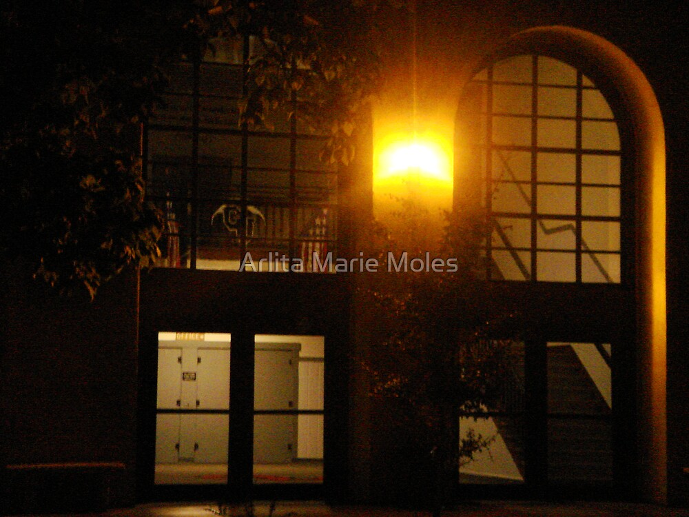 MySchool by Arlita Marie Moles