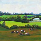 Gilsenan's Field by James Kelliher