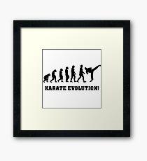 Karate Evolution Framed Print