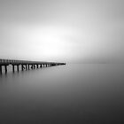 Cornwallis Wharf in black and white  by earlcooknz
