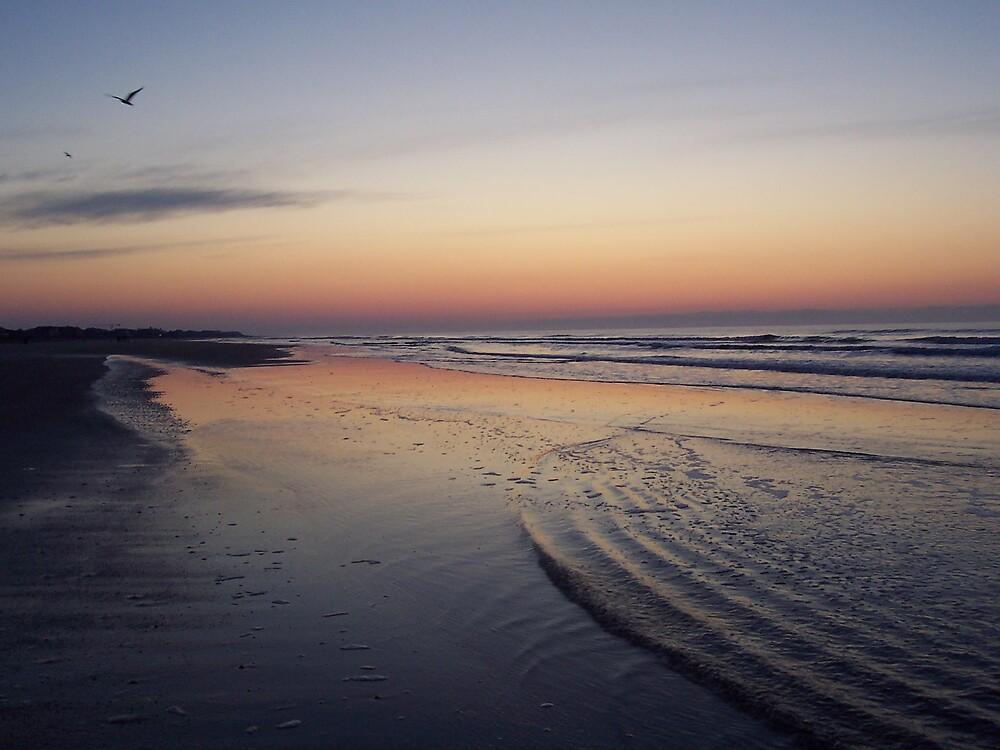 Carolina Sunrise by CynthiaRenee