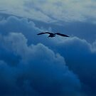 High above the clouds by migueldelmonte
