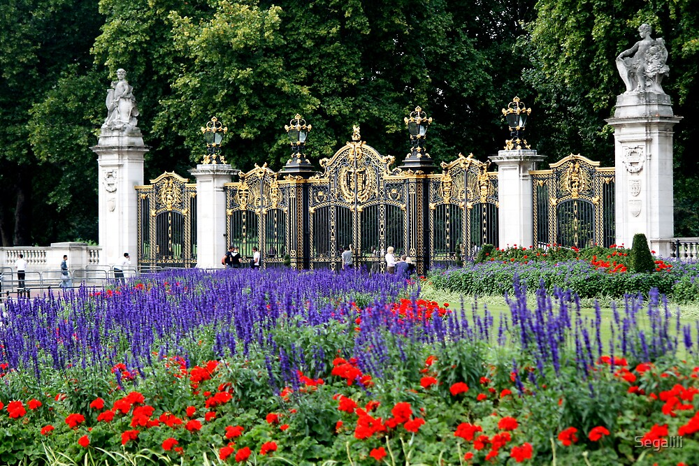 Buckingham Palace Flowers by Segalili