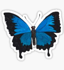 Male Ulysses Butterfly Design Sticker