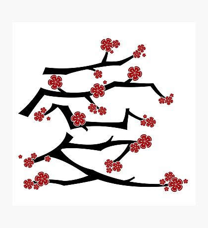 Chinese 'Ai' (Love) Calligraphy With Red Cherry Blossoms On Black Branches | Japanese Sakura Kanji Photographic Print