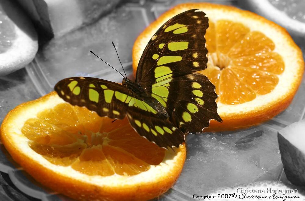Green Malachite On Orange by Christena Honeyman
