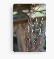 rusty wire Canvas Print
