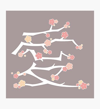 Chinese 'Ai' (Love) Calligraphy With Pink Cherry Blossoms On White Branches | Japanese Sakura Kanji Photographic Print
