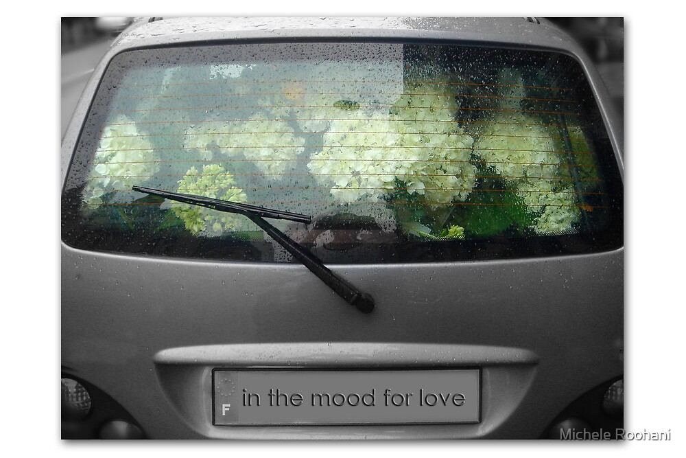 In the mood for love by Michele Roohani