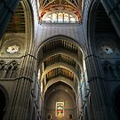 Catedral de Santa Maria a Real de Almudena II by Guilherme Bermêo