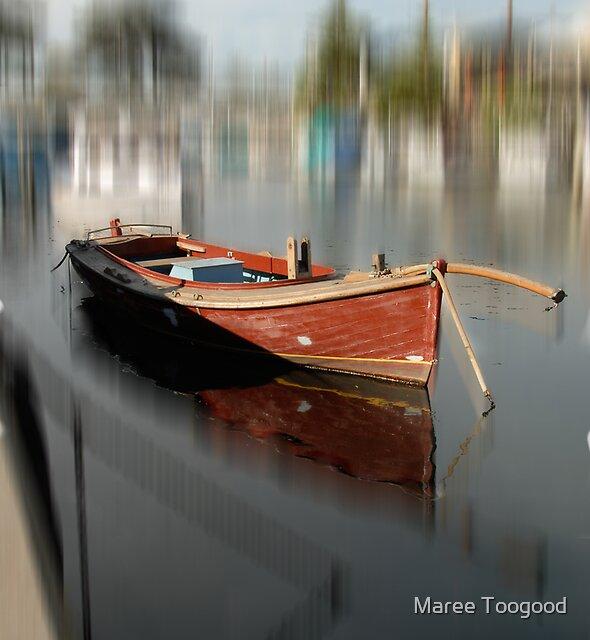 In focus by Maree Toogood