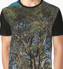 Tree Framed Graphic T-Shirt
