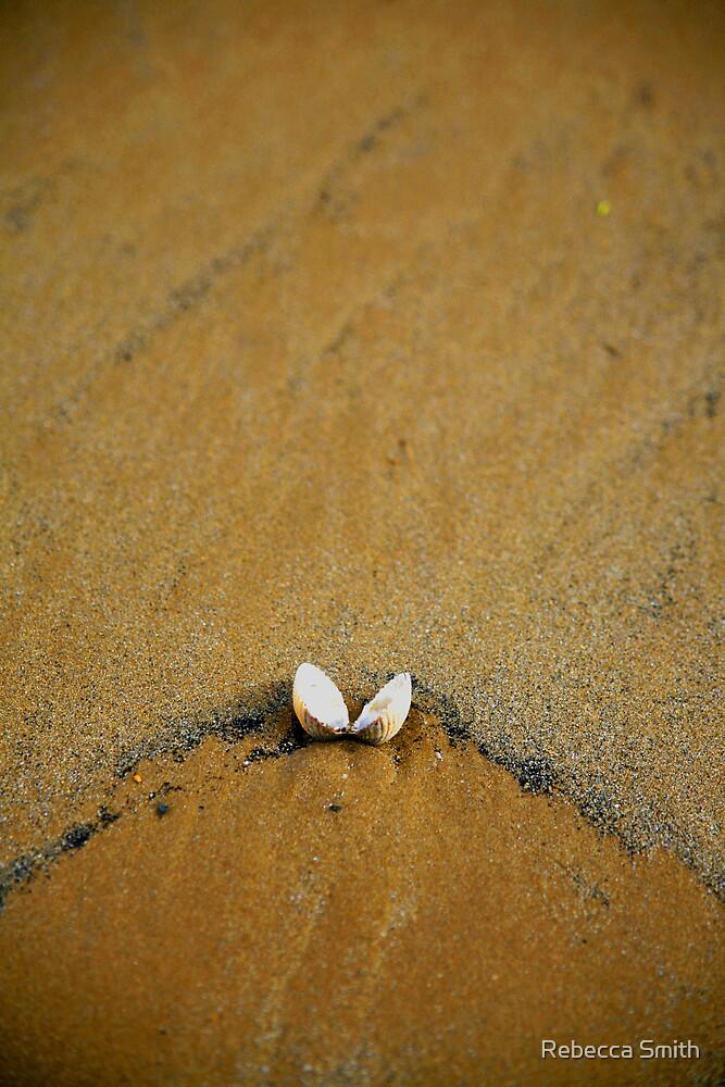 Beach Shell by Rebecca Smith