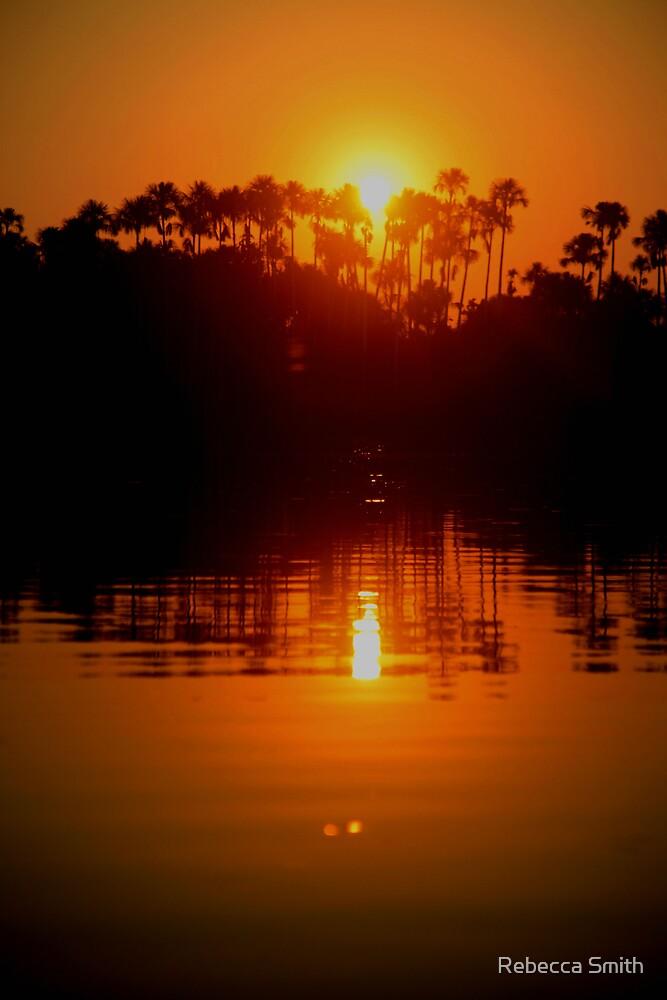 Amazon Sunset by Rebecca Smith