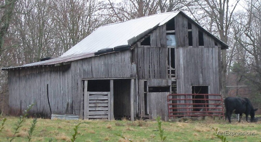 Old Tennessee Barn by ArtExpressions