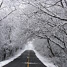 A Winter's Travel by Kathilee