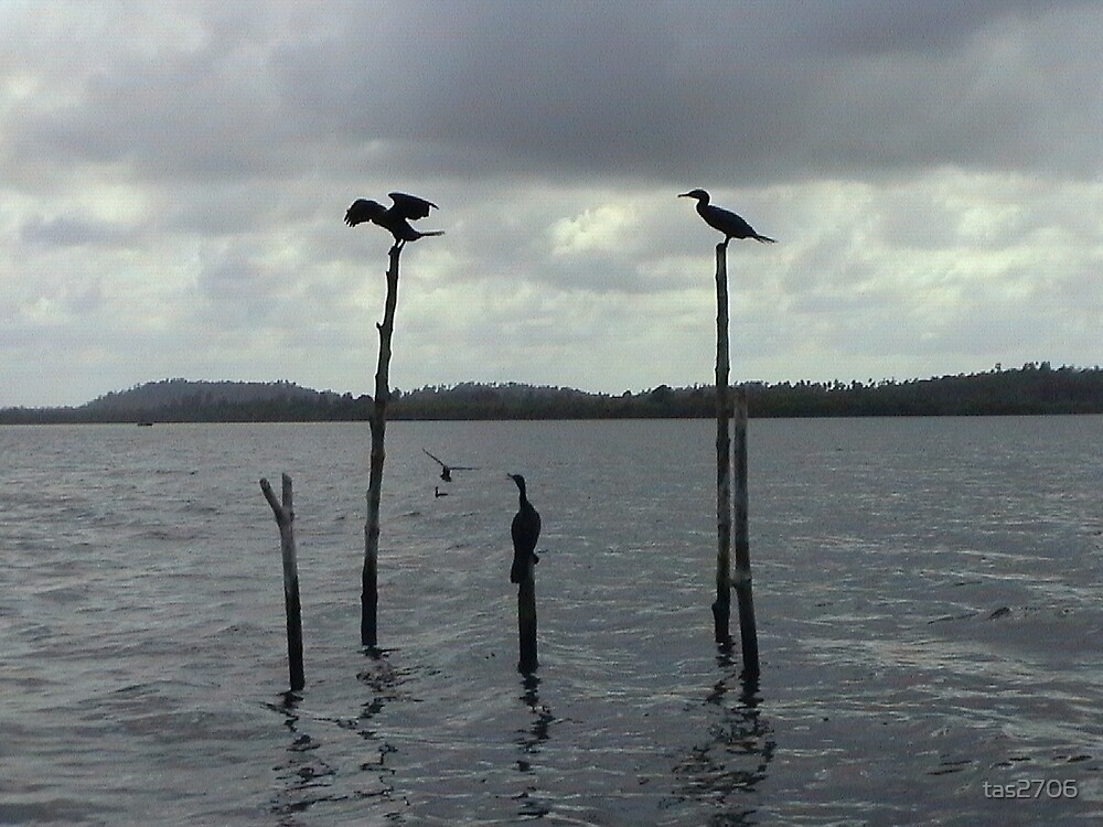 Meeting Place in Sri Lanka by tas2706