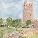 Desert View Watchtower- Grand Canyon by Diane Hall