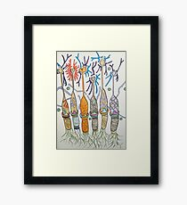 Cone cell neural candlesticks  Framed Print