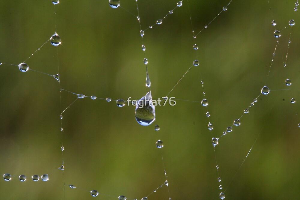 Dew Web by foghat76