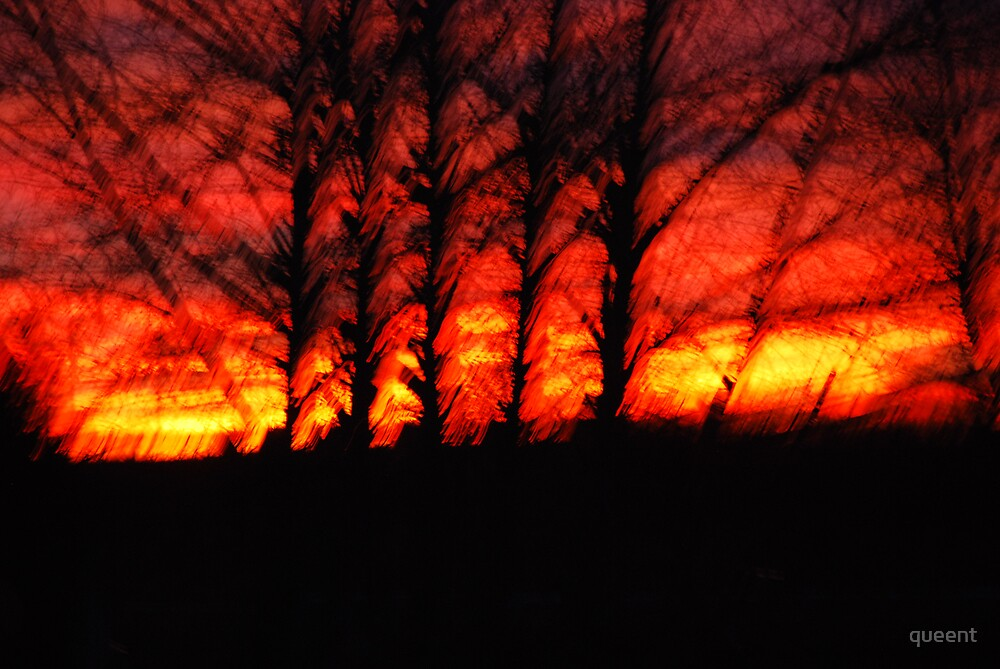 Sunrise fire by queent