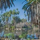 Los Angeles Arboretum by Imagery