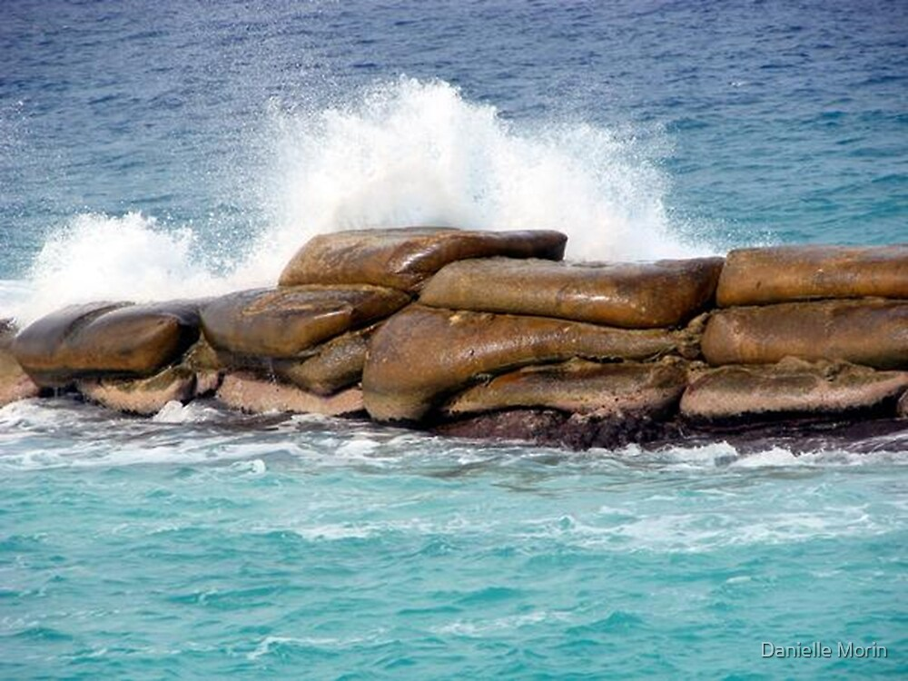 Crashing Cayman Waves by Danielle Morin