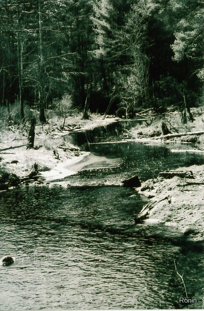 Arcadian Stream by Ronin