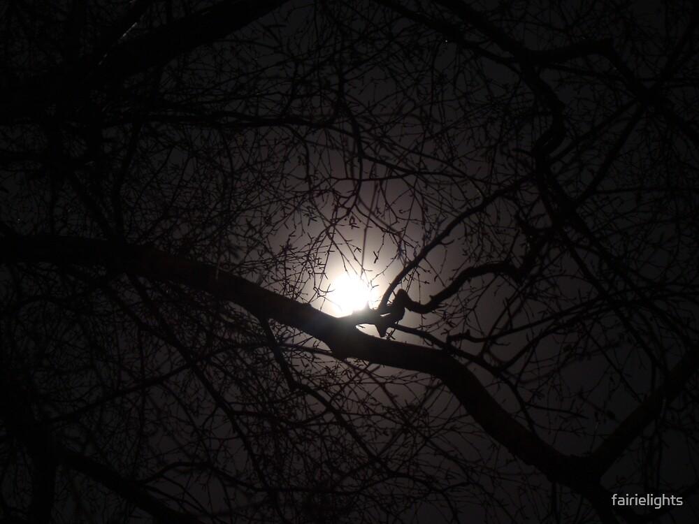 Winter Moon by fairielights