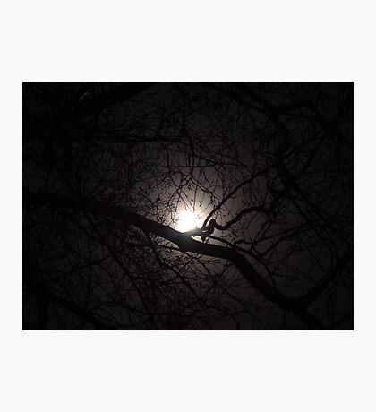Winter Moon Photographic Print