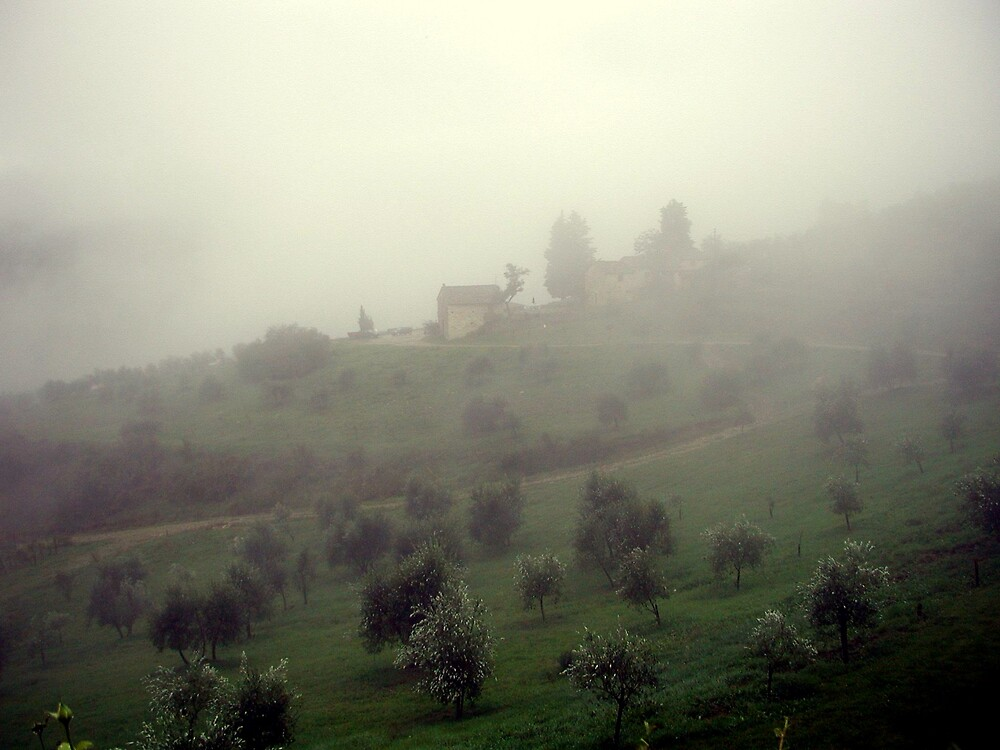 Tuscan Fog by LizzyM