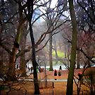 Central Park, NYC by Mark Ross