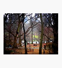 Central Park, NYC Photographic Print