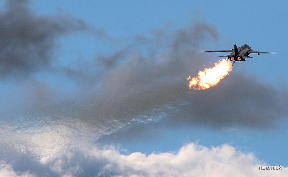 Dump & Burn F-111 by naemick
