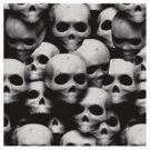 Skulls Skull an more Skulls by Tony  Bazidlo