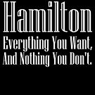 Hamilton Everything/Nothing by Lee Edward McIlmoyle
