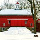 Tinicum Barn in Winter II by Debra Fedchin